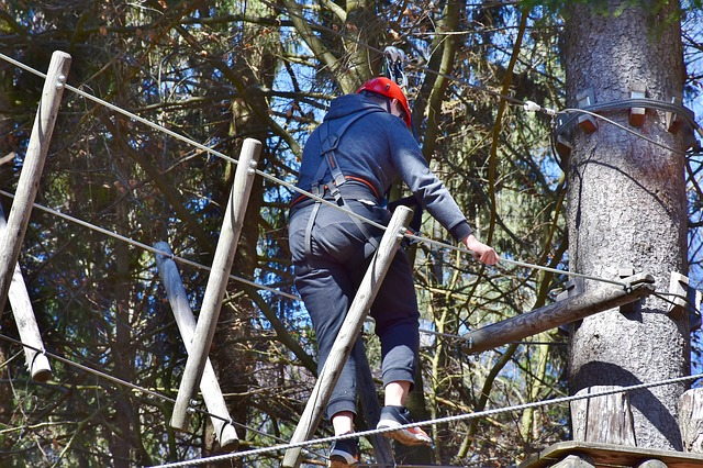 Park linowy to świetny sposób na rodzinną integrację i aktywny wypoczynek. Znamy listę polecanych parków linowych w Polsce!